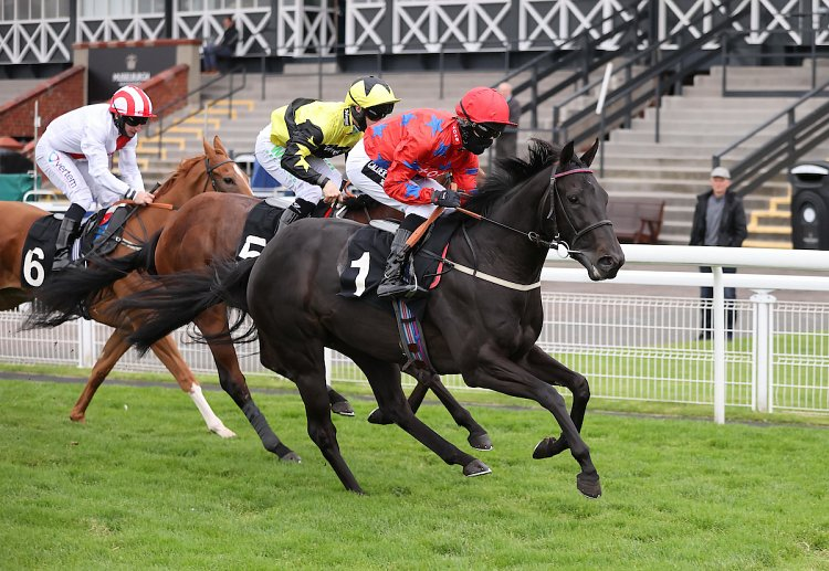 Blackberry making it 3 wins from 4 starts at Musselburgh!