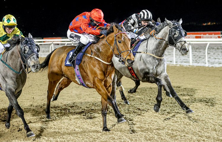 Fendale winning for the 5th time in his career at Newcastle!