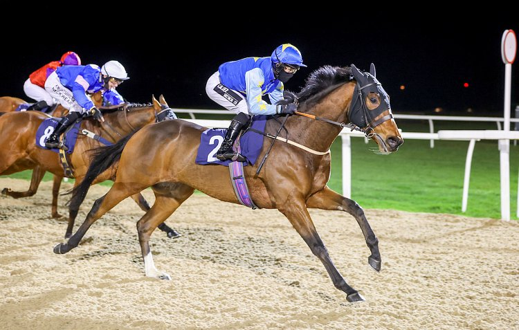 Swiss Connection winning impressively at Newcastle